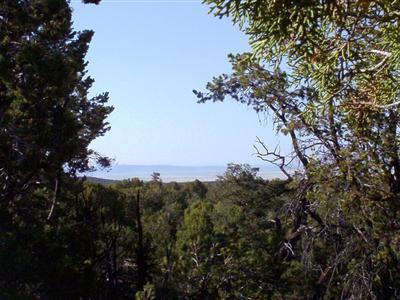 54867 N. Presidio Parkway, Seligman, AZ 86337 Photo 13