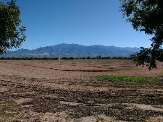 6680 W. Palo Verde Ln., Pima, AZ 85543 Photo 15