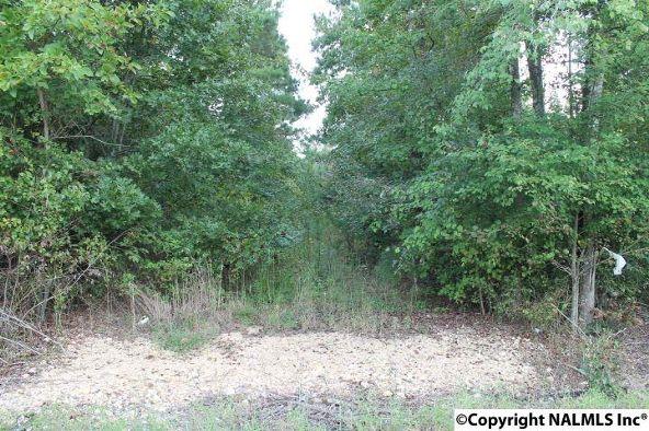 310 County Rd. 590, Fort Payne, AL 35968 Photo 5