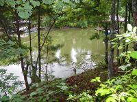 Home for sale: 2041 Lantana Ln., Lake Wylie, SC 29710