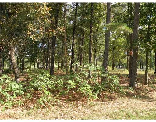 92 Holiday Island Dr., Holiday Island, AR 72631 Photo 4