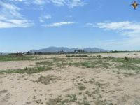 Home for sale: 000 O'Kelley Rd. S.W., Deming, NM 88030