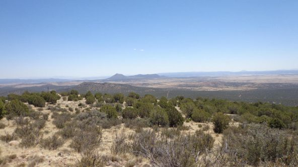 1104 Westwood Ranch Lot 1104, Seligman, AZ 86337 Photo 12
