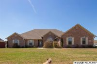 Home for sale: 13687 Summerfield Dr., Athens, AL 35613