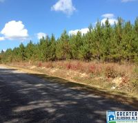 Home for sale: 72 Acres Hwy. 78, Heflin, AL 36264