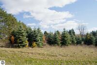Home for sale: 0025 Lipp Farm Rd., Benzonia, MI 49616