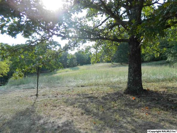 2200a Hwy. 68, Collinsville, AL 35961 Photo 10