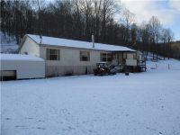 Home for sale: 813 Joshus Fork, Rockport, WV 26169