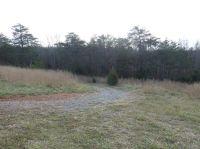 Home for sale: 0-17.2 Ac Roark Mill Rd., Hurt, VA 24563