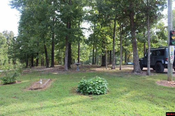 235 Mc 3060, Yellville, AR 72687 Photo 10