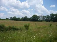 Home for sale: Lot 18 N. Hwy. 13, Clinton, MO 64735