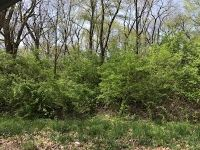 Home for sale: Lot 4 Second St., Saint Anne, IL 60964
