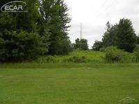 Home for sale: 10827 South Gera, Birch Run, MI 48415