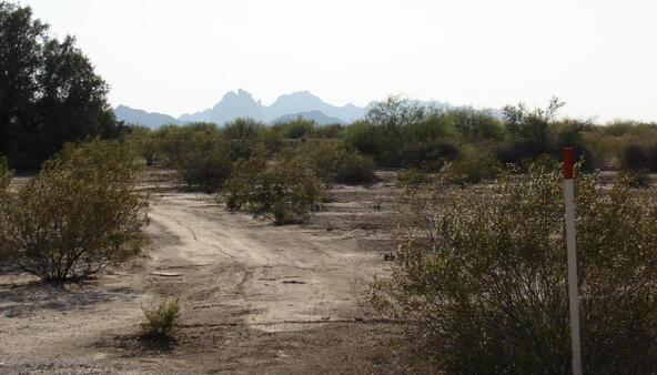517xx U W. Tonto St., Tonopah, AZ 85354 Photo 21