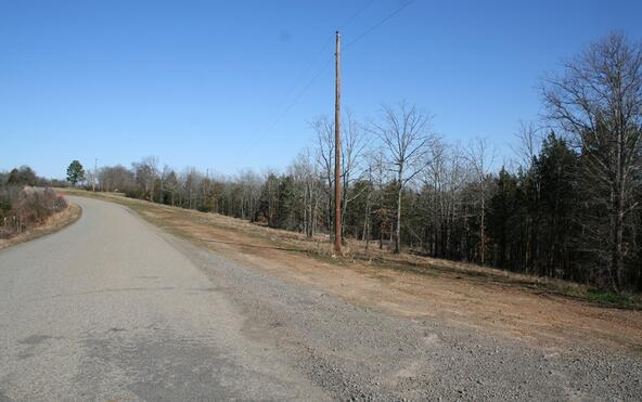 3825 Donnell Ridge Rd., Conway, AR 72034 Photo 4