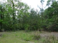 Home for sale: Lot 1 Pitch Landing Rd., Conway, SC 29527