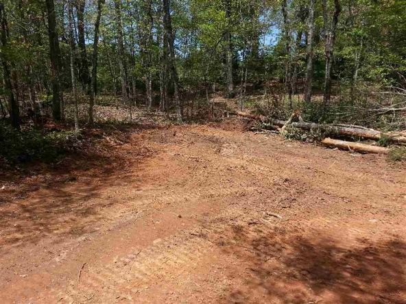 133 Honeycomb Trail, Central, SC 29630 Photo 5