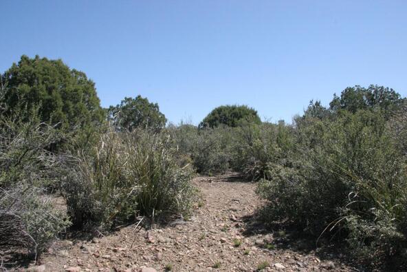 392 Rim Trail, Prescott, AZ 86303 Photo 5