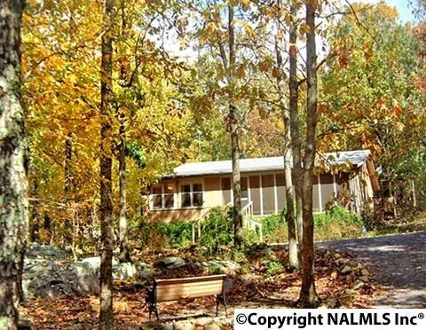 93 County Rd. 600, Mentone, AL 35984 Photo 2
