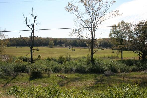 278 Hwy. 64 East, Conway, AR 72032 Photo 4
