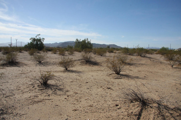 55410 W. Ivory Rd., Maricopa, AZ 85139 Photo 14