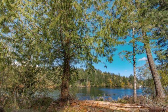 3091 S.E. Kamilche Point Rd., Shelton, WA 98584 Photo 8