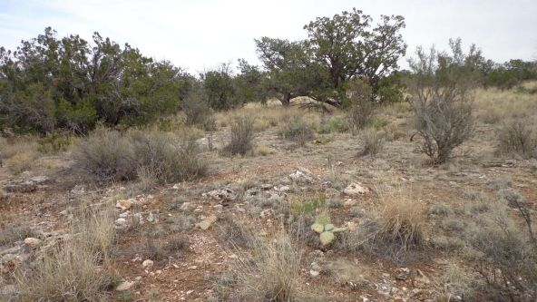 952 Bridge Canyon Unit 5 Lot 952, Seligman, AZ 86337 Photo 13
