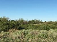 Home for sale: County Rd. 110, Wellington, TX 79095