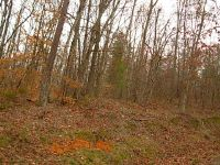 Home for sale: Goins Hill Rd., Ten Mile, TN 37880