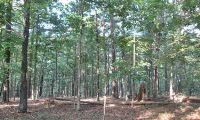 Home for sale: 44 Pine Tree Dr., Kansas, OK 74347