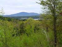 Home for sale: Lot 4 Oak Hill Rd., Springfield, NH 03284