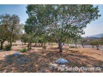 35440 Thomas Rd., Agua Dulce, CA 91390 Photo 32