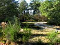 Home for sale: Lot 22 Arrowhead Ln., Fort Gaines, GA 39851