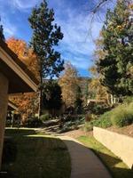 Home for sale: 160 Conifer Cir., Oak Park, CA 91377