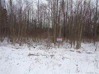 Home for sale: 806 Hamlin Clarkson Town Line Rd., Hamlin, NY 14464