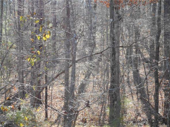 245 Marks Trail Rd. #7, Wetumpka, AL 36093 Photo 2