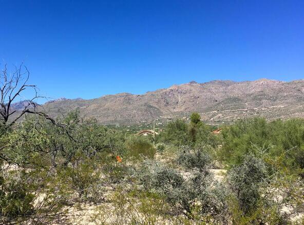 12441 E. Fireweed, Tucson, AZ 85749 Photo 5