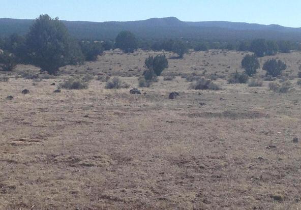 24 Off Of Antelope Run, Ash Fork, AZ 86320 Photo 6