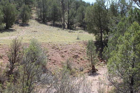273 Arizona Rd., Ash Fork, AZ 86320 Photo 9