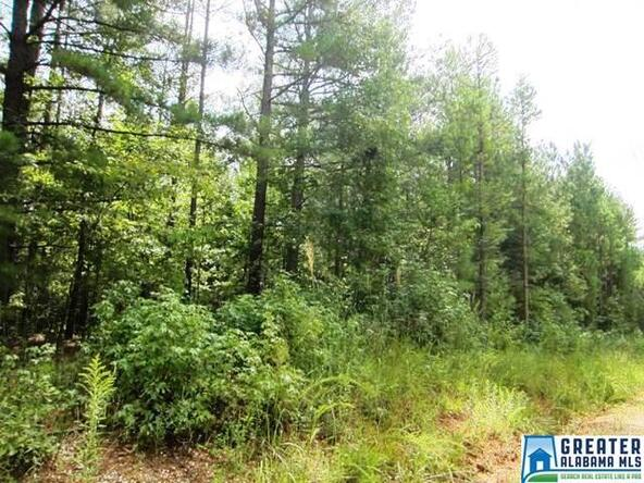 3.1 Acres Thomas Ln., Ashland, AL 36251 Photo 4