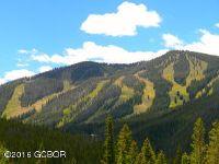 Home for sale: 2567 Lakota Trail, Winter Park, CO 80482