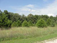 Home for sale: 00 Chestnut Ridge, Houston, MO 65483