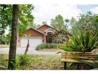 Home for sale: 24441 Nettles Rd., Christmas, FL 32709