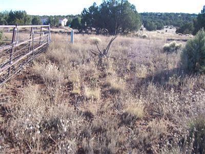1357 W. Pinto Dr., Ash Fork, AZ 86320 Photo 27