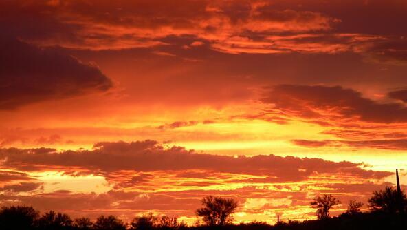 40262 E. Florence-Kelvin Hwy., Florence, AZ 85132 Photo 22
