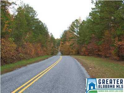 2481 Guntertown Rd., Talladega, AL 35160 Photo 2