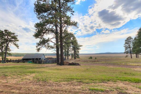 8100 W. Dk Ranch Rd., Flagstaff, AZ 86005 Photo 34