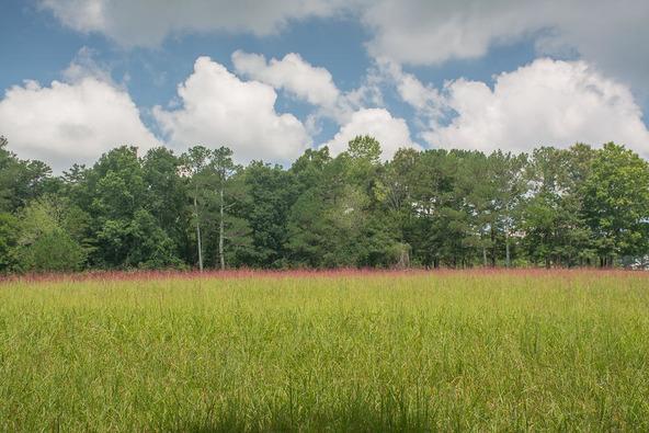 1374 County Rd. 641, Mentone, AL 35984 Photo 36
