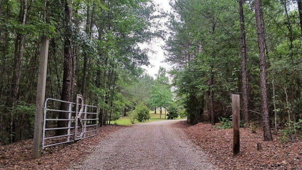 653 County Rd. 339, Skipperville, AL 36374 Photo 7
