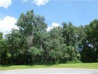 Home for sale: 3061 E. Berwick, Hernando, FL 34442
